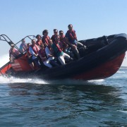 rib powerboat